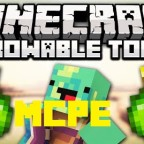 Throwable-Torch-Mod-mcpe-image